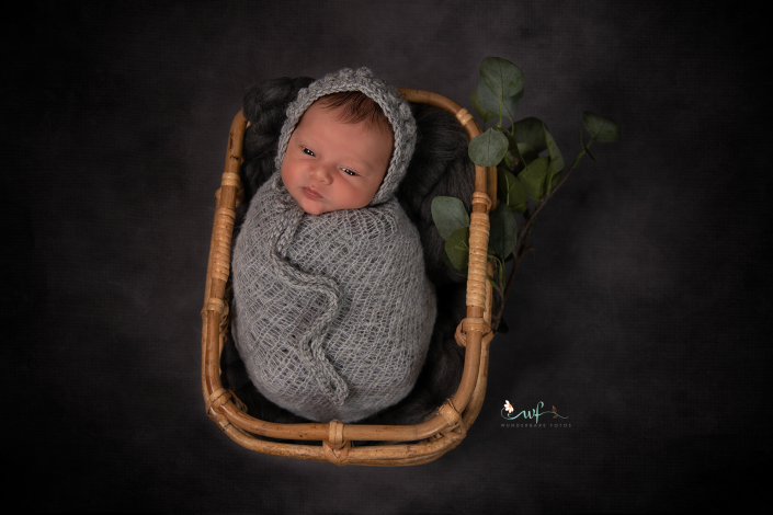 baby-fotoshooting-wolmirstedt-magdeburg-babyfotograf-shooting