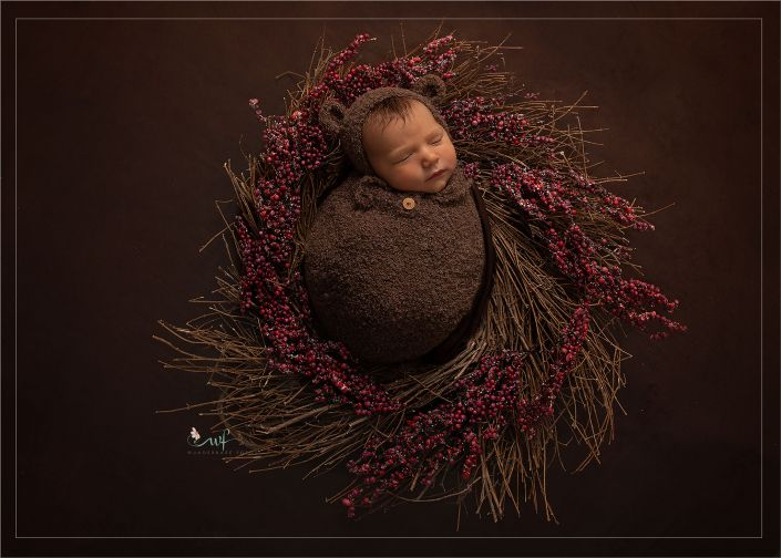 newborn-shooting-fotograf-studio-bilder-baby-magdeburg-wolmirstedt-barleben-magdeburg-halberstadt